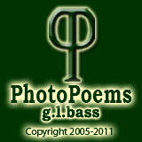 photopoems logo 2 P's back to back, green background copyright
